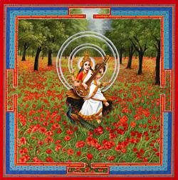Taller música India